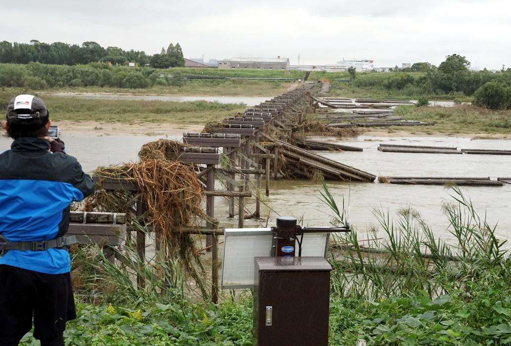 流れ橋「また通れへん…」/台風増水 橋板流出
