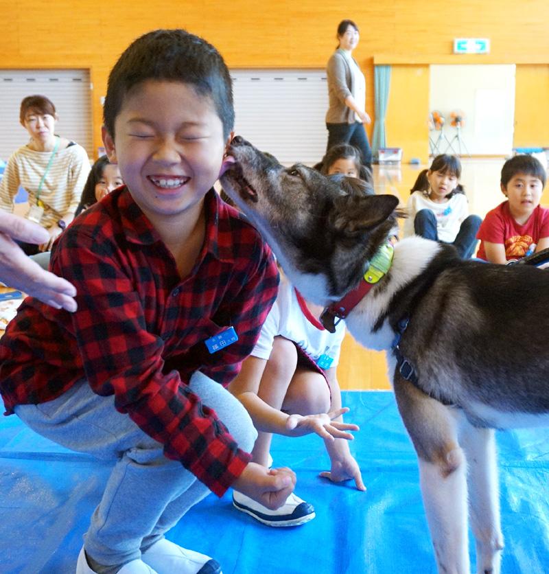 「ダメ」知る動物愛護教室/井手町立多賀小