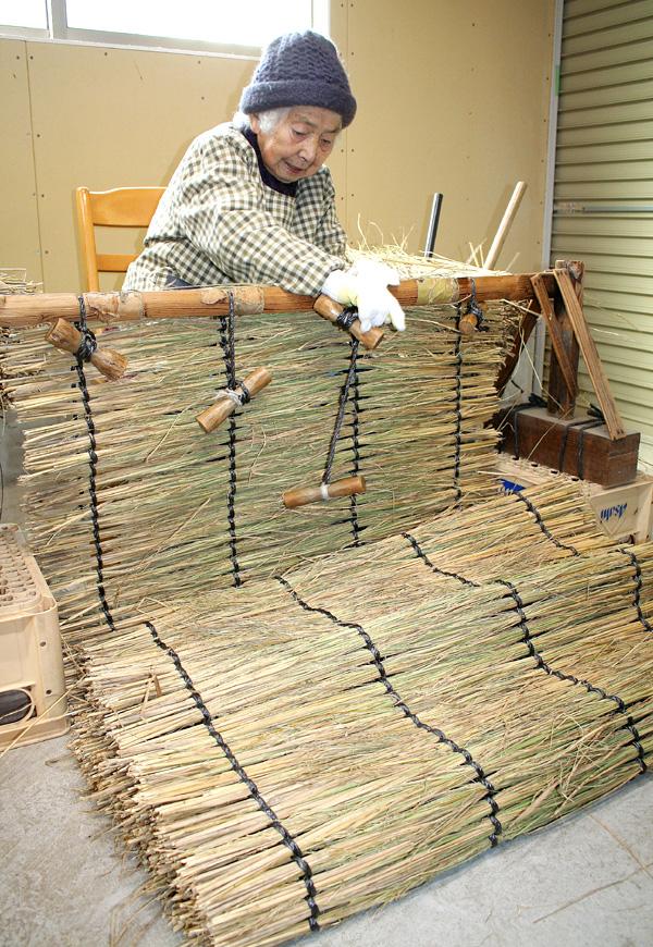 「こも編み」作業たけなわ/高級てん茶栽培に不可欠