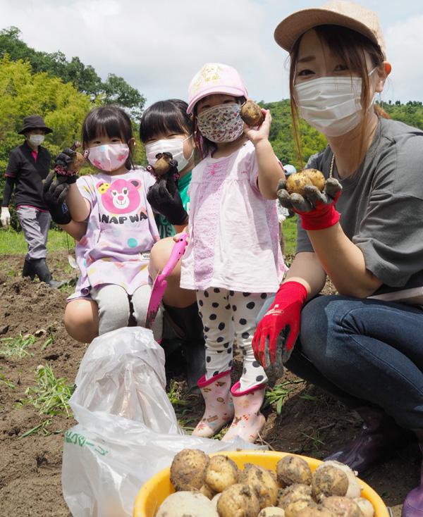 ジャガイモ収穫、あふれる笑顔/京田辺・ふるさと普賢寺体験学習