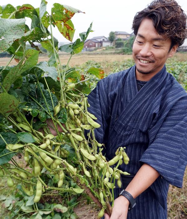 秋の味覚「朝採り」新丹波黒枝豆直売/久御山・若手農家グループ