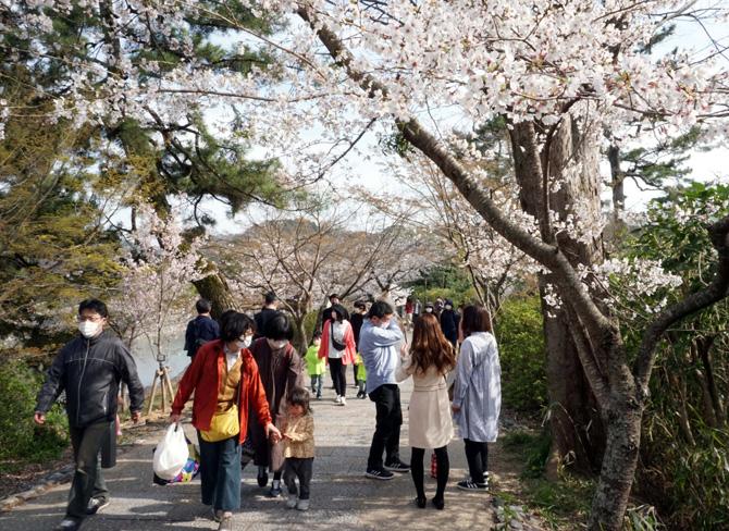 ストップ「コロナ慣れ」/春の観光シーズン到来