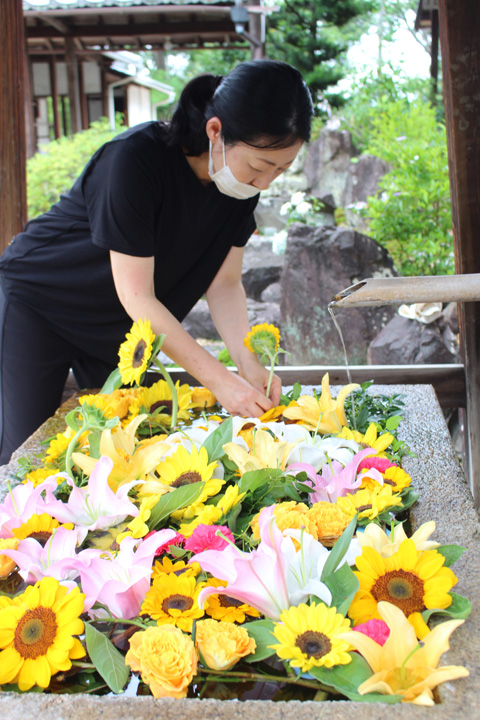 夏を迎える花手水/宇治・興聖寺